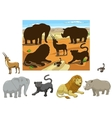 Match the animals to their shadows child game vector image vector image