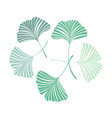 background with ginkgo biloba leaves vector image vector image