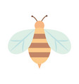bee insect animal nature cartoon flat icon style vector image