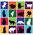 cat set vector image vector image