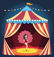 dancing girl on circus arena entertaining show vector image