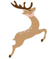 floral deer vector image