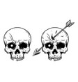 human skull with arrow in head design element for vector image vector image