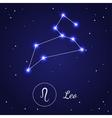 Leo Zodiac Sign Stars on the Cosmic Sky vector image vector image