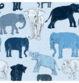 Seamless pattern with elephant vector image vector image