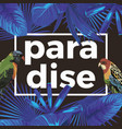 slogan paradise parrots tropical leaves dark vector image vector image