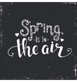 Spring is in the air Hand drawn typography poster vector image vector image