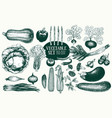 vegetables hand drawn set vector image vector image