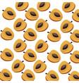 apricot half fruit harvest fresh seamless pattern vector image vector image