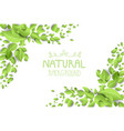 Backdrop with green leaves vector image vector image