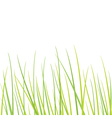 Grass - design element vector image vector image