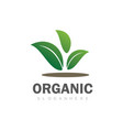 green leaf organic logo vector image vector image