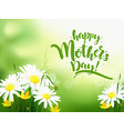 mothers day greeting card with daisy vector image vector image