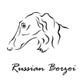 Russian Borzoi vector image vector image