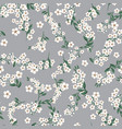 seamless pattern with small white simple flowers vector image vector image