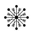 snowflake xmas winter vector image