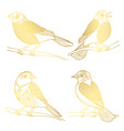 beautiful golden birds isolated on white vector image vector image