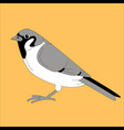 bird sparrow flat style vector image vector image
