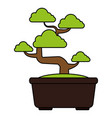 bonsai tree isolated icon vector image vector image