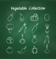 chalk style outline vegetable symbol set vector image
