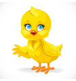 cute bachick shows a side isolated on a white vector image vector image