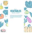 fresh organic fruits market vector image vector image