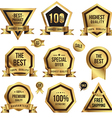 Gold tag set vector image vector image