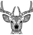 horned deer head with floral ornament vector image vector image
