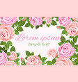 pale pink roses wreath design for cards vector image vector image