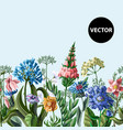seamless border with wild flowers vector image