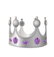 silver crown with gems vector image