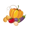 Still Life With Fresh Vegetable Crops Collection vector image vector image