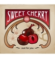 sweet dessert chocolate vector image vector image