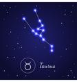 Taurus Zodiac Sign Stars on the Cosmic Sky vector image vector image