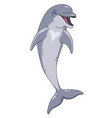 smiling dolphin vector image