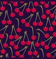 cherries fresh fruit pattern vector image