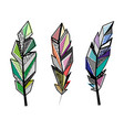 feathers color lines set vector image vector image