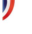 french flag frame corner vector image