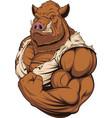 strong ferocious boar vector image vector image