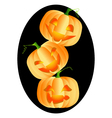 Three bright and ripe pumpkins on black frame vector image vector image