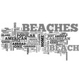 why go abroad when you have american beaches text vector image vector image
