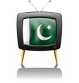 A television with the flag of Pakistan vector image vector image