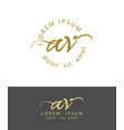 a v initials monogram logo design dry brush vector image vector image