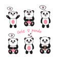 cute baby pandas vector image