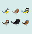 cute songbirds vector image vector image