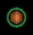 flower life yantra mandala in lotus vector image vector image