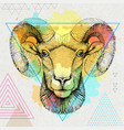 hipster realistic animal ram or mouflon vector image vector image