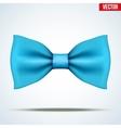 Realistic blue bow tie vector image vector image