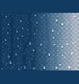 realistic water droplets on transparent vector image vector image