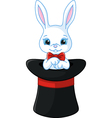 white rabbit in a hat vector image vector image